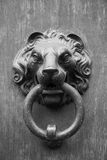 Door in Basel. Door knocker in Basel - Switzerland Royalty Free Stock Images