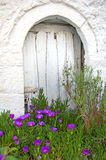 The door behind the flowers! Stock Images