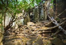 Door in Beng Mealea. Under Tilt-shift lens stock photos