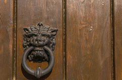 Door with brass knocker in the shape of a lion`s head, beautiful Royalty Free Stock Image