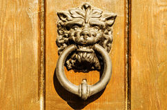 Door with brass knocker in the shape of a lion& x27;s head, beautiful Stock Photos
