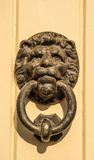 Door with brass knocker in the shape of a lion& x27;s head, beautiful Royalty Free Stock Photos