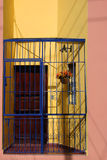 Door Cage. Bars protect the occupants of this apartment in Santo Domingo, Dominican Republic Stock Images