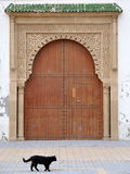 Door and Cat, Essaouria Morocco Royalty Free Stock Photo
