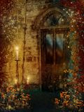 Door with colorful vines. Old vintage door with colorful vines stock illustration