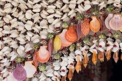Door curtain Stock Image