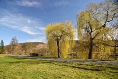 Door de Berounka-rivier Royalty-vrije Stock Fotografie