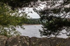 Door de bomen bij Ladybower-reservoir Stock Afbeeldingen
