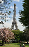 Door de Toren van Eiffel in de lentetijd Stock Afbeeldingen