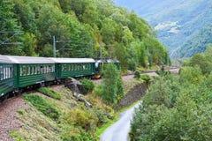 Door de trein over Skandinavische bergen Stock Fotografie