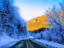 Door de winter in de zomer Royalty-vrije Stock Afbeelding