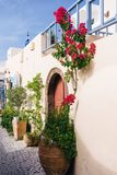 Door Decorations. Flowers outside a door in Santorini Royalty Free Stock Photos