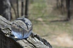 Door een kristallen bol Royalty-vrije Stock Foto