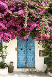 Door and flowers. An old door with beautiful Flowers in the artist village, Sidi Bou Said in Tunisia stock image