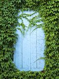 Door framed by plants Royalty Free Stock Images