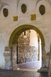 Door or gate Stock Images