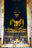 Through the  door golden Buddha Stock Photography