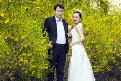 Door gouden jasmijnbloemen, een paar geschotene huwelijksfoto Stock Foto