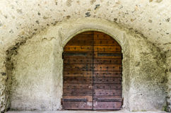 Door. The grandeur of an antique door Stock Photography