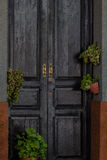 Door with green plants Royalty Free Stock Photography