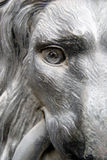 Door hammer in Vienna. A fierce dog or lion staring from a Vienna door Royalty Free Stock Photography