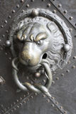 lion doorknob in germany royalty free stock images