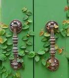Door handle on green wooden door Stock Photo