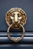 Door handle lion. On blue door with a ring in the mouth Stock Photos