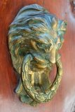 Door handle  lion head Royalty Free Stock Photos