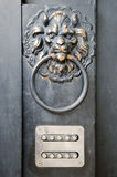 The door handle - lion's head Royalty Free Stock Photos