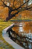 Door het meer in de herfst Stock Afbeelding