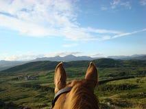Door het Paardenoren Paardrijden in Cumbria Stock Foto
