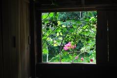 Door het venster Royalty-vrije Stock Foto