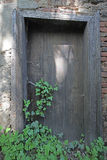 Door with ivy Stock Photo