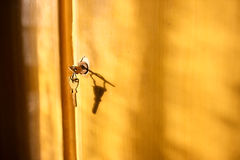 Door and keys Royalty Free Stock Images