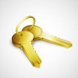 Door keys  on white background Royalty Free Stock Photo