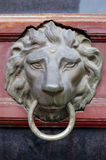 Door knob. With lions head Royalty Free Stock Photography