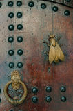 Door knocker detail. With a bronze fly sculpture Royalty Free Stock Photos