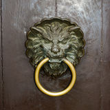 Door knocker lion Royalty Free Stock Photo