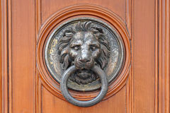 Door knocker lion Royalty Free Stock Images