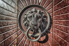 Door Knocker Lion Head Royalty Free Stock Photos