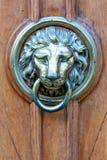 Door knocker - lion`s head. Door knocker - blue metalic lion`s head on wooden door royalty free stock photography