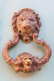 Door knocker lion shaped. At Cartagena de Indias Stock Photos