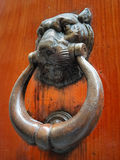 Door knocker no.2 Stock Photography