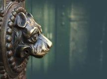 Door knocker. Vintage dog door knocker bronze stock photo