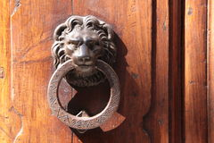 Door knockers lion on an old door Stock Photo
