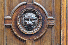 Door lion. Detail shot of engraved lion head in wood Stock Images