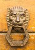 Door lion knocker Stock Photos
