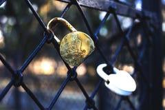 Door locks hanging on an iron grate Stock Image