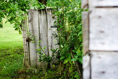 Door in nature. Photo of small snail on the old doors in the small village in the Bosnia Royalty Free Stock Photography